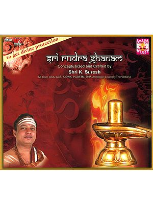 Sri Rudra Ghanam: To Get Divine Protection (MP3 Audio CD)