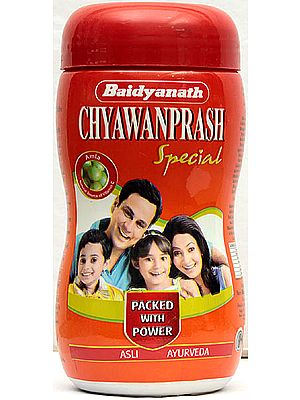 Baidyanath Chyawanprash - Special