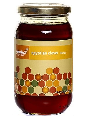 Fabindia Organics Egyptian Clover Honey