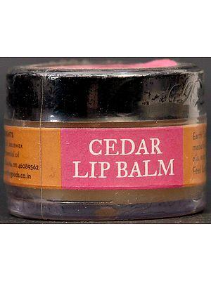 Cedar Lip Balm