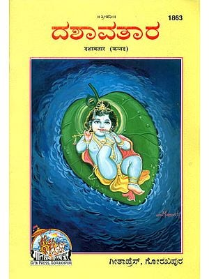 ದಸವ್ತಾರ್: Dasavtar in Kannada (Picture Book)