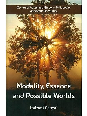 Modality Essence and Possible Worlds