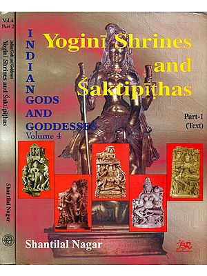 Yogini Shrines and Saktipithas (Set of 2 Volumes)