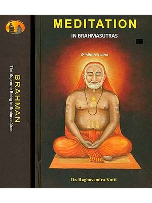 Brahman and Meditation: A Commentary on The Brahmasutras in Two Volumes