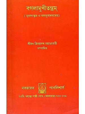 বগলামুখী তন্ত্রম: Baglamukhi Tantram