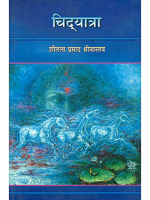 चिद्यात्रा: Chidyatra - A Collection of Poems