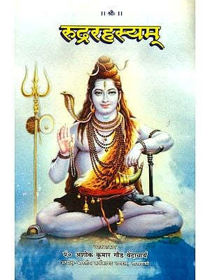 रूद्ररहस्यम्: Rudra Rahasyam
