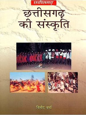 छत्तीसगढ़ की संस्कृति: Culture of Chhattisgarh