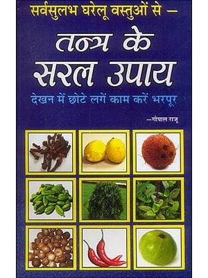 तन्त्र के सरल उपाय: Easy Solutions from Tantra Using Common Householder Item
