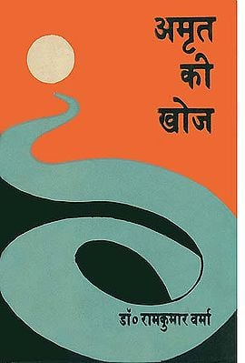 अमृत की खोज: The Search for Amrit (An Old Book)