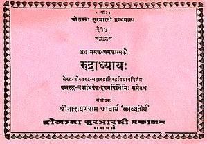 रुद्राध्याय: Rudradhyaya