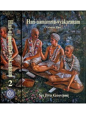 Hari Namamrta Vyakaranam - Learn Sanskrit Grammar Through the Names of Krishna (Set of 2 Volumes)