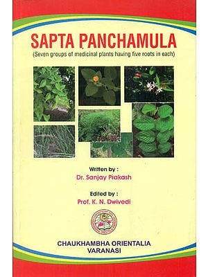 Sapta Panchamula (Seven Groups of Medicinal Plants Having Five Roots in Each)