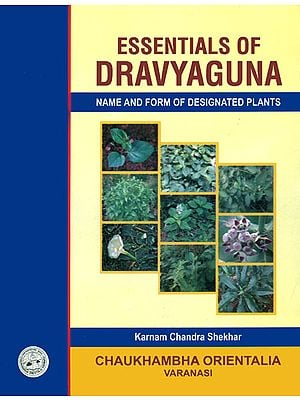 Essentials of Dravyaguna (Name and Form of Designated Plants)