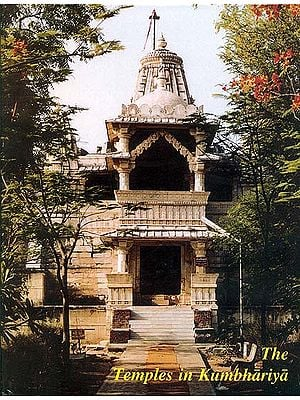 The Temples in Kumbhariya