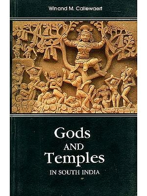 Gods and Temples in South India
