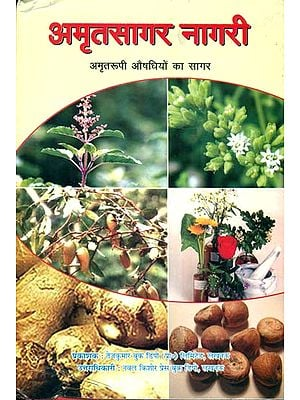 अमृतसागर नागरी:  Amrit Sagar Nagari (The Collection of Ayuvedic Medicines)