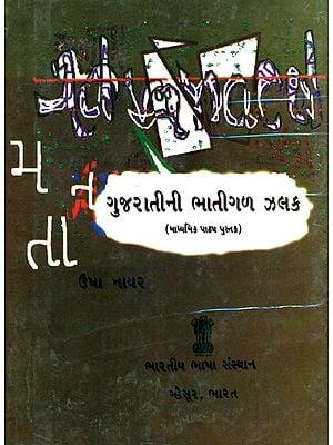 ગુજરાતીની ભાતીગળ ઝલક:  Folk Glimpses of Gujarat's (Gujarati)