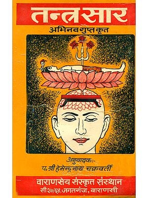तन्त्रसार (संस्कृत एवं हिंदी अनुवाद)- Tantra Sara by Abhinava Gupta (An Old and Rare Book)