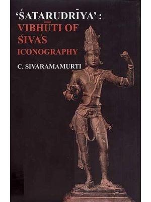 'Satarudriya': Vibhuti of Sivas Iconography