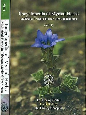 Encyclopedia of Myriad Herbs - Medicinal Herbs in Tibetan Medical Tradition (Set of 2 Volumes)