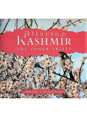 Alluring Kashmir (The Inner Spirit)