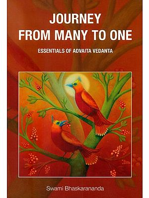 Journey From Many to One (Essentials of Advaita Vedanta)