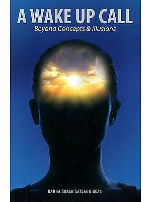 A Wake Up Call (Beyond Concepts and Illusions)