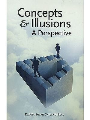 Concepts and Illusions (A Perspective)