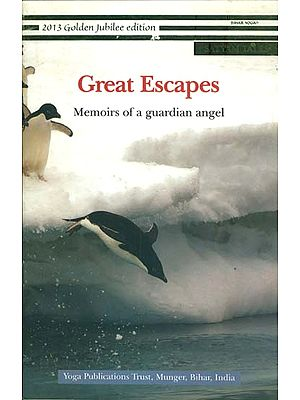 Great Escapes - Memoirs of a Guardian Angel