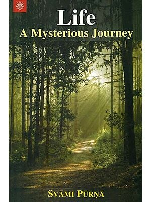 Life (A Mysterious Journey)