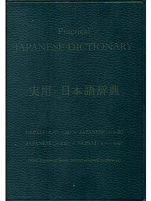 Practical Japanese Dictionary