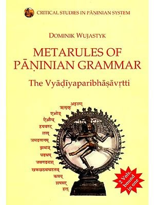 Metarules of Paninian Grammar - The Vyadiyaparibhasavrtti (2 Vols. Bound in One)