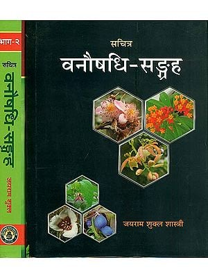 वनौषधि सङ्ग्रह: Collection of Forest Herbs with Colored Photographs (Set of 2 Volumes)