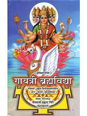 गायत्री ब्रह्मविद्या: Gayatri Brahma Vidya on Srividya