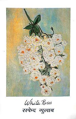 सफेद गुलाब: White Roses