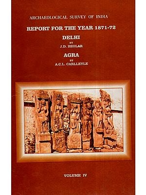 ASI Report for the Year 1871-72 Dehli and Agra (Volume IV)
