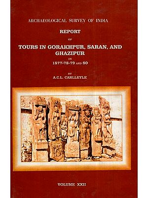 ASI Report of Tours in Gorakhpur, Saran, and Ghazipur in 1877- 78- 79 and 80 (Volume – XXII)