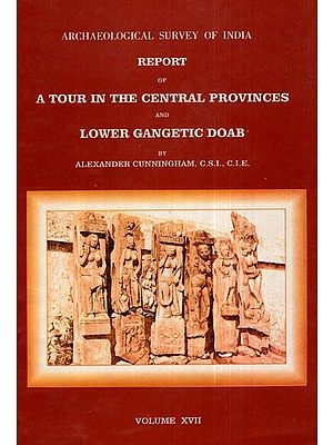 ASI Report of A Tour in the Central Provinces and Lower Gangetic Doab (Volume XVII)