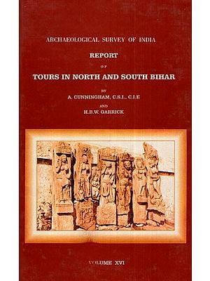 ASI Report of Tours in North and South Bihar (Volume XVI)