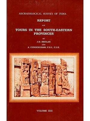 ASI Report of Tours in the South- Eastern Provinces (Volume XIII)