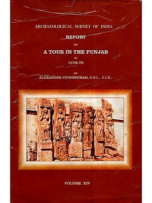 ASI Report of A Tour in The Punjab in 1878- 79