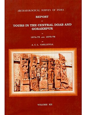 ASI Report of Tours in the Central Doab and Gorakhpur in 1874- 75 and 1875- 76 (Volume XII)