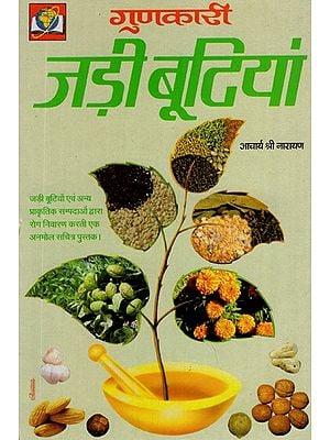 गुणकारी जड़ी बूटियां- Quality Herbs