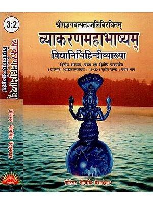 व्याकरणमहाभाष्यम् - Grammar Mahabhashyam- Vidyadhar Hindi Explanation (Set of 2 Volumes)