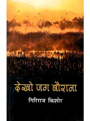 देखो जग बैराना : Dekho Jag Bairana (Collection of Articles by Giriraj Kishore)