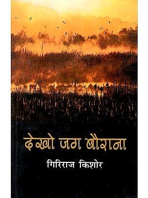 देखो जग बैराना : Dekho Jag Bairana (Collection of Articles by Giriraj Kishore)