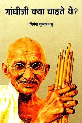 गांधीजी क्या चाहते थे?: What did Gandhiji want?