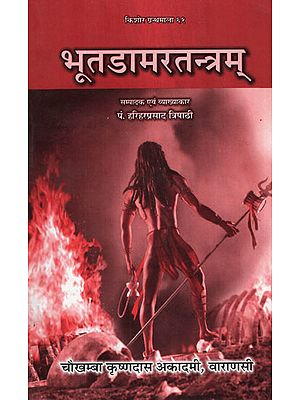भूतडामरतन्त्रम् - Bhuta Damara Tantram