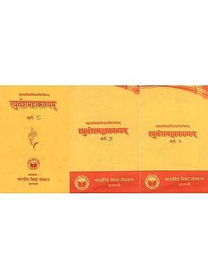 रघुवंशमहाकाव्यम्: Raghuvansh Mahakavyam (Set of 3 Volumes)